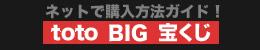 ネットでtoto・BIG・宝くじの購入方法ガイド!